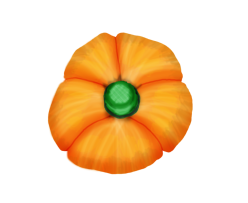 pumpkin large